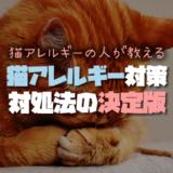 実際の猫アレルギーの人が教える猫アレルギー対策