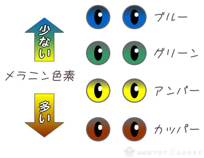 猫の目の色