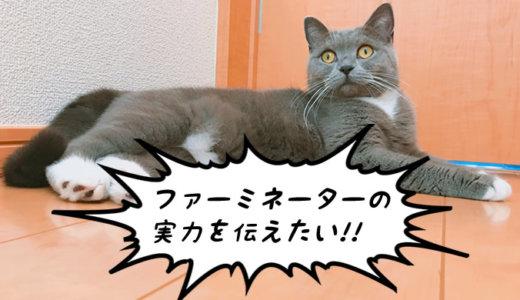 猫の抜け毛対策はファーミネーターを使うべき理由