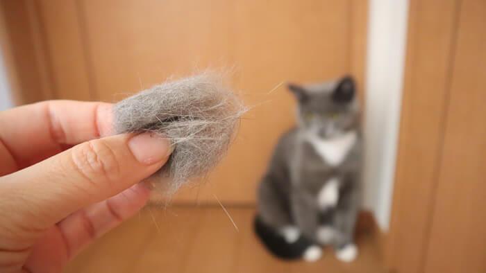 ファーミネーターで抜け毛玉を敵だと判断する猫