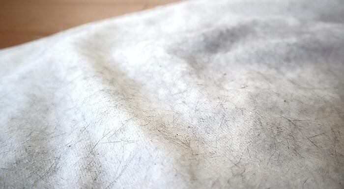 ハンモックに付いた猫の抜け毛