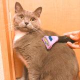 猫 ファーミネーター 嫌がる
