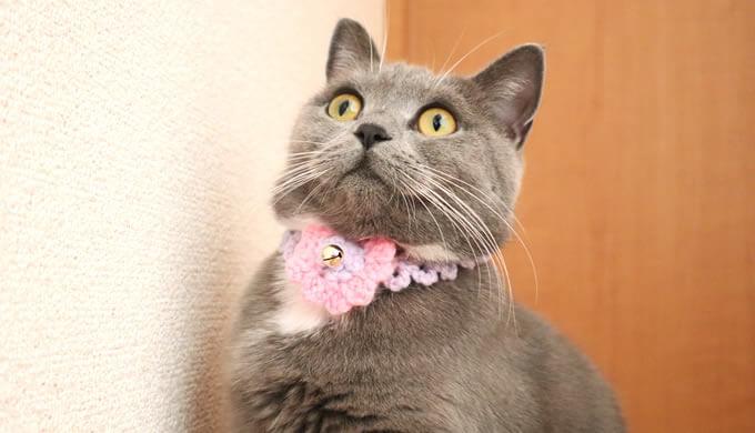ハンドメイドの毛糸の猫首輪