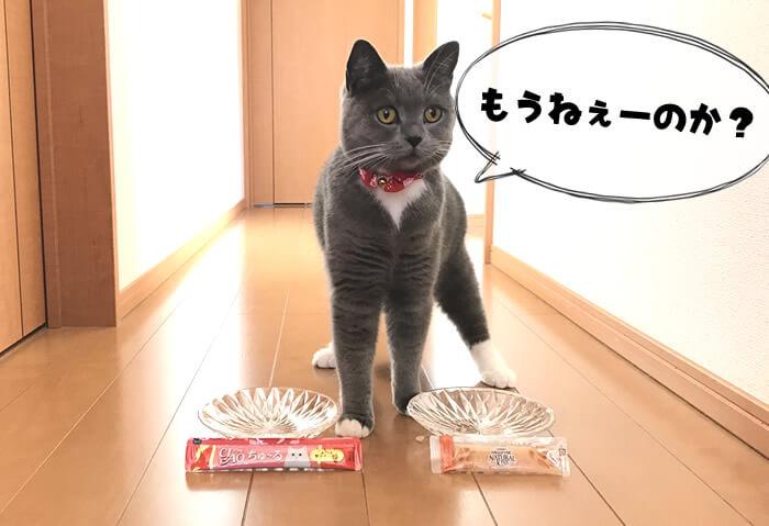 猫のおやつ対決は引き分け