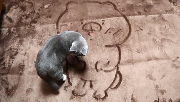 ともだちをくまの絵を踏む猫