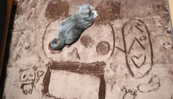 カーペットのパンダの絵の上に乗る猫