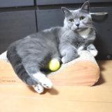 お気に入りのボールを抱える猫