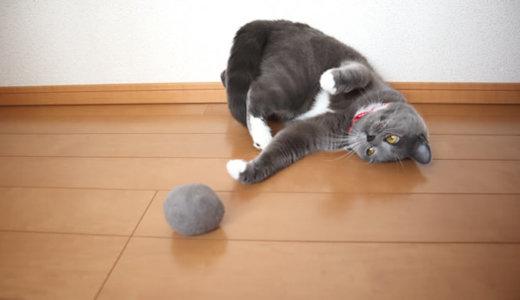 自分の毛玉を敵だと思ってたら味方だったことに気付いた猫