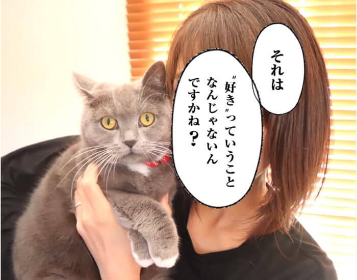 抱っこ嫌いな猫 好きっていいなよ