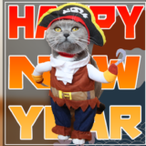 2020年元旦猫のモモおめでたい猫の画像