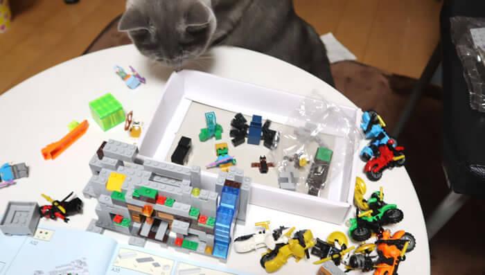 マイクラのレゴを確かめる猫のモモ