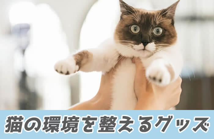 猫アレルギー対策として猫の環境を整えるグッズ