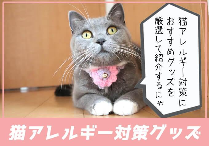猫アレルギー対策におすすめのグッズ紹介を厳選