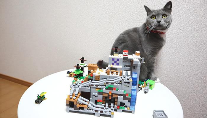 完成したマイクラのレゴと記念撮影をする猫のモモ