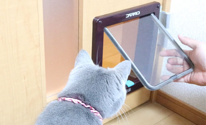 DIY猫ドアの取り付け方-最終確認