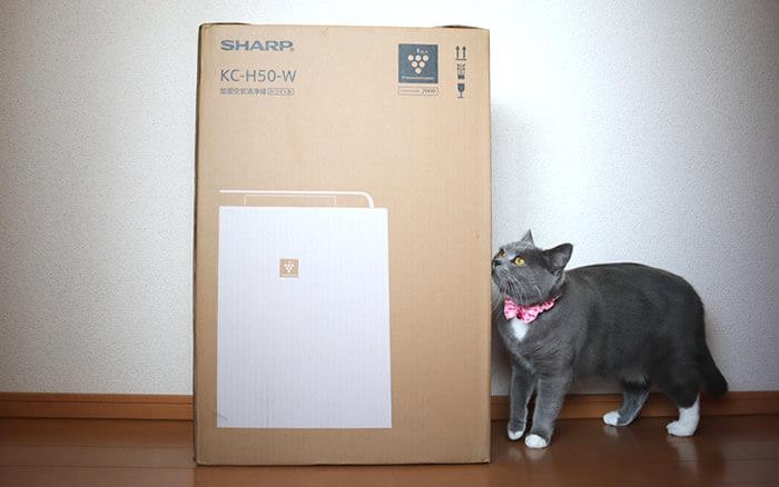 シャープの空気清浄機と猫のモモ