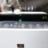 猫アレルギー対策にシャープのプラズマクラスター空気清浄機がおすすめ